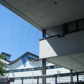 Bridge (2008)